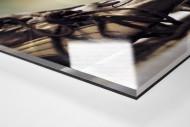 Maradonas Schuhe (Farbe) als Direktdruck auf Alu-Dibond hinter Acrylglas (Detail)