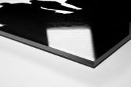 Im Flutlichtschein als Direktdruck auf Alu-Dibond hinter Acrylglas (Detail)