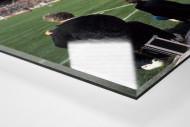 Im Rheinstadion 1983 als Direktdruck auf Alu-Dibond hinter Acrylglas (Detail)