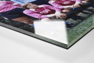 HSV in Rosa als Direktdruck auf Alu-Dibond hinter Acrylglas (Detail)