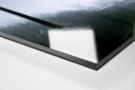 Vor dem Parkstadion (1) als Direktdruck auf Alu-Dibond hinter Acrylglas (Detail)