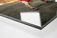 Brummer und Melzer als Direktdruck auf Alu-Dibond hinter Acrylglas (Detail)