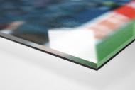 Euro Eddy als Direktdruck auf Alu-Dibond hinter Acrylglas (Detail)