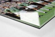 Bremen im Pokalfinale als Direktdruck auf Alu-Dibond hinter Acrylglas (Detail)