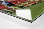 München im De Kuip als Direktdruck auf Alu-Dibond hinter Acrylglas (Detail)