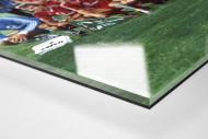 München im Waldstadion als Direktdruck auf Alu-Dibond hinter Acrylglas (Detail)
