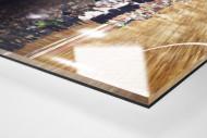 Standing Ovations für die Handballer als Direktdruck auf Alu-Dibond hinter Acrylglas (Detail)