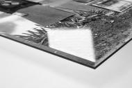 Damengolf in Ranelagh als Direktdruck auf Alu-Dibond hinter Acrylglas (Detail)