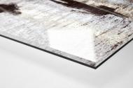 Läufer mit Schatten als Direktdruck auf Alu-Dibond hinter Acrylglas (Detail)