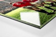 Rugby 1971 als Direktdruck auf Alu-Dibond hinter Acrylglas (Detail)