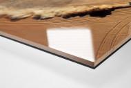 Autos im chilenischen Sand als Direktdruck auf Alu-Dibond hinter Acrylglas (Detail)