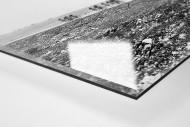 Um die Kurve bei Lüttich-Bastogne-Lüttich als Direktdruck auf Alu-Dibond hinter Acrylglas (Detail)
