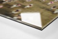 Start beim Roc d'Azur als Direktdruck auf Alu-Dibond hinter Acrylglas (Detail)