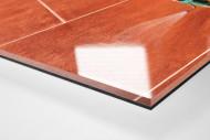 Bewässerung als Direktdruck auf Alu-Dibond hinter Acrylglas (Detail)