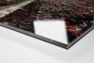 Basel als Direktdruck auf Alu-Dibond hinter Acrylglas (Detail)