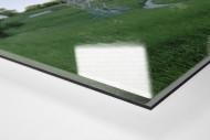 Wien (First Vienna) als Direktdruck auf Alu-Dibond hinter Acrylglas (Detail)