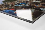 Potsdam (Babelsberg, 2013) als Direktdruck auf Alu-Dibond hinter Acrylglas (Detail)