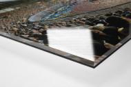 Braunschweig (2013) als Direktdruck auf Alu-Dibond hinter Acrylglas (Detail)