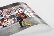 Englische Fans in Rotterdam als FineArt-Print