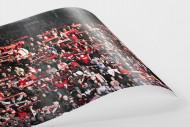 Freiburg Fans als FineArt-Print