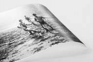 Schlammschlacht an der Hafenstraße als FineArt-Print