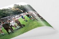 Gladbacher Jubel in Marl als FineArt-Print