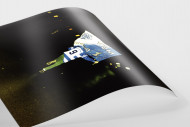 MSV-Fan als FineArt-Print