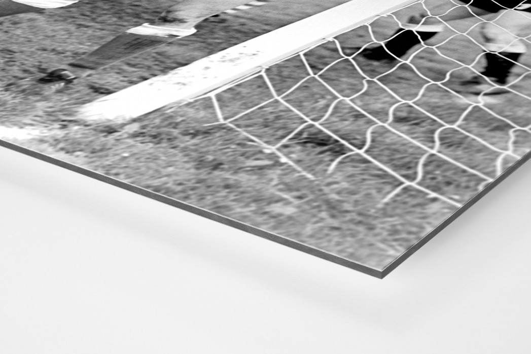 Urbanczyk am kurzen Pfosten als auf Alu-Dibond kaschierter Fotoabzug (Detail)