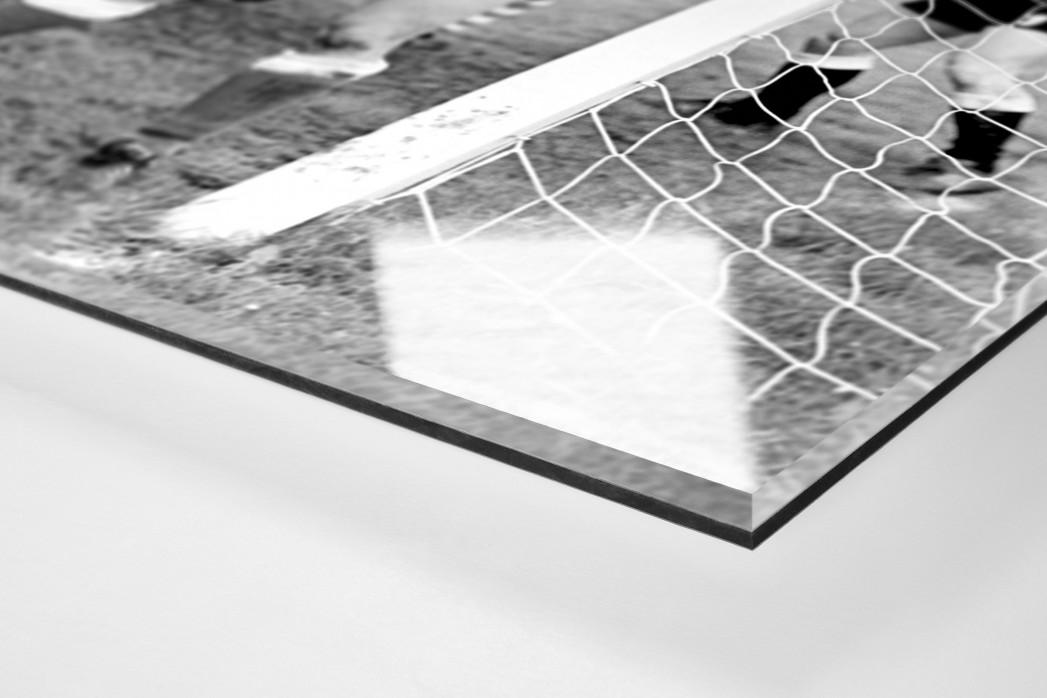 Urbanczyk am kurzen Pfosten als Direktdruck auf Alu-Dibond hinter Acrylglas (Detail)