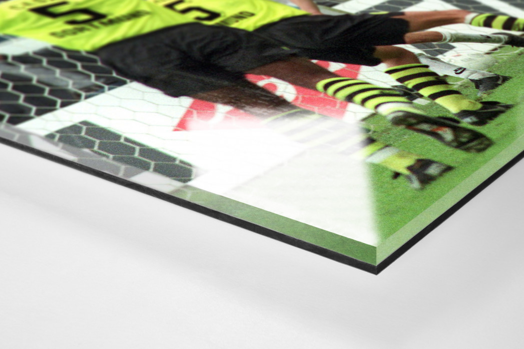 Zorc jubelt als Direktdruck auf Alu-Dibond hinter Acrylglas (Detail)