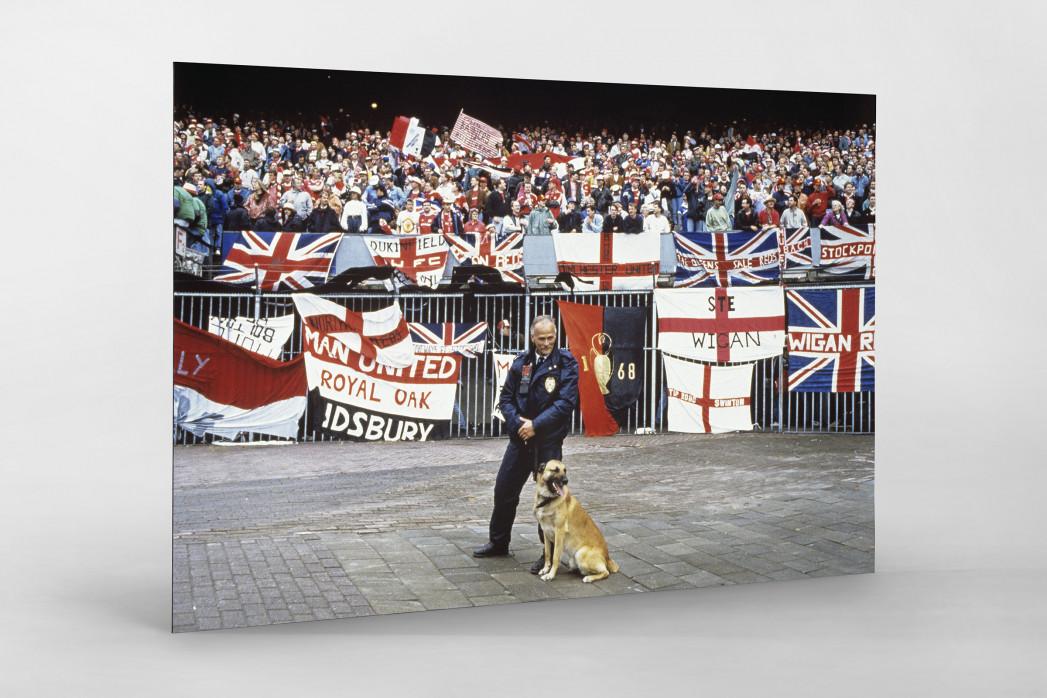 Englische Fans in Rotterdam als auf Alu-Dibond kaschierter Fotoabzug