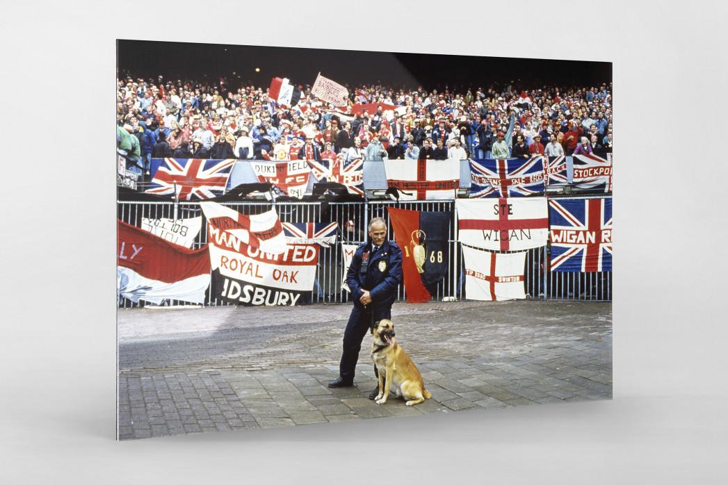 Englische Fans in Rotterdam als Direktdruck auf Alu-Dibond hinter Acrylglas