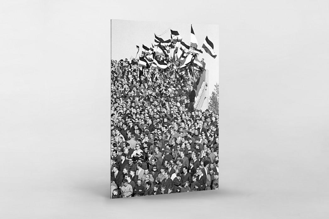 Hannover Fans 1967 als auf Alu-Dibond kaschierter Fotoabzug