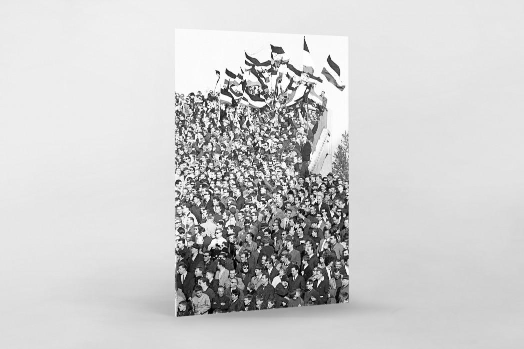 Hannover Fans 1967 als Direktdruck auf Alu-Dibond hinter Acrylglas
