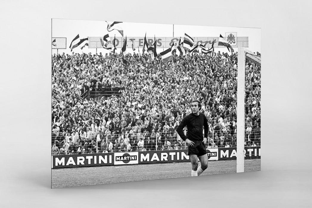 Hannover Fans 1971 als auf Alu-Dibond kaschierter Fotoabzug