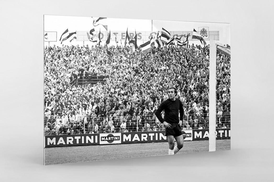 Hannover Fans 1971 als Direktdruck auf Alu-Dibond hinter Acrylglas
