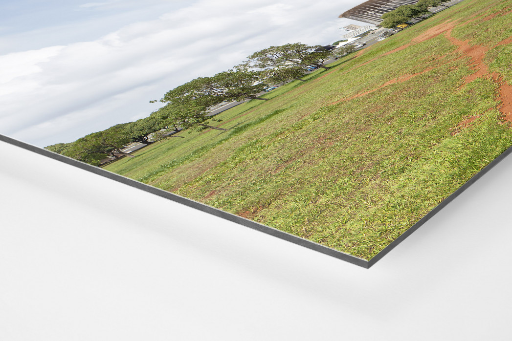 Baum vor dem Estádio Nacional de Brasília als auf Alu-Dibond kaschierter Fotoabzug (Detail)
