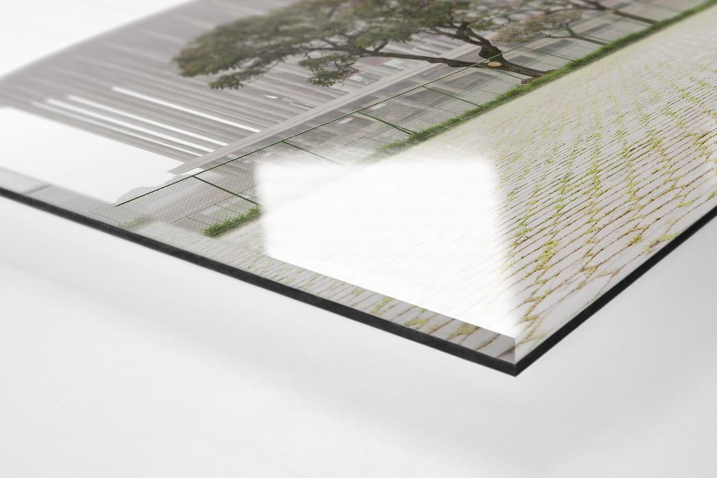Estádio Nacional de Brasília im Nebel  als Direktdruck auf Alu-Dibond hinter Acrylglas (Detail)