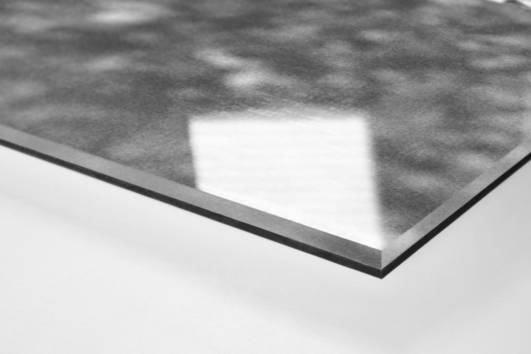 Toni Schumacher (1) als Direktdruck auf Alu-Dibond hinter Acrylglas (Detail)