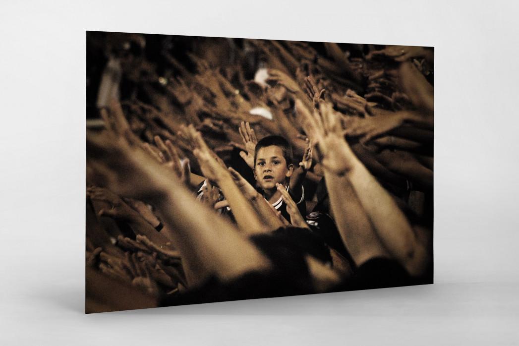 Young Corinthians Fan (2) als auf Alu-Dibond kaschierter Fotoabzug