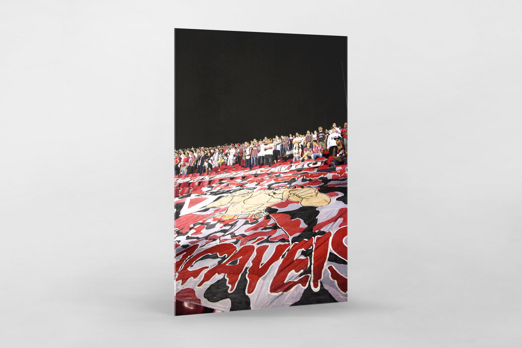 Fans And Flags als Direktdruck auf Alu-Dibond hinter Acrylglas
