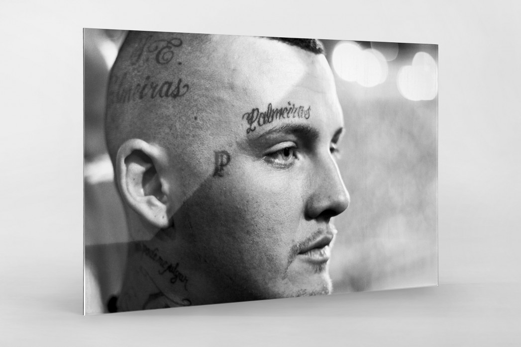 Tattooed Palmeiras Fan als Direktdruck auf Alu-Dibond hinter Acrylglas