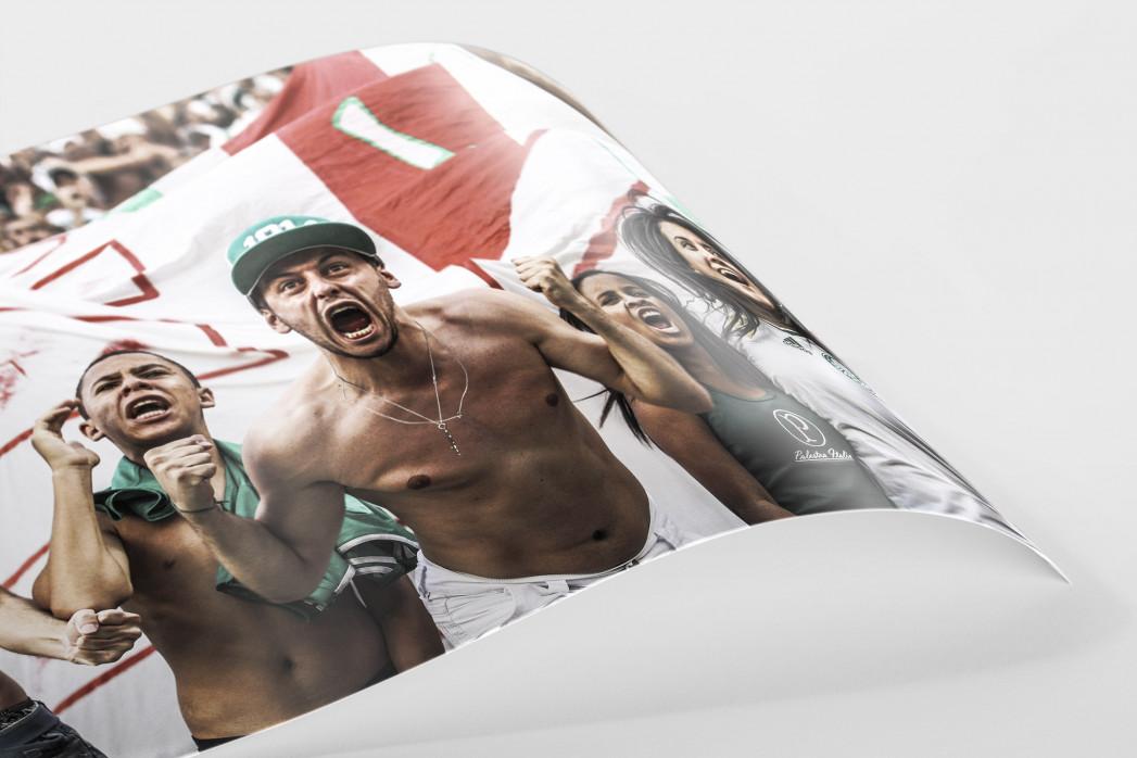 Palmeiras Fan Celebrating als FineArt-Print