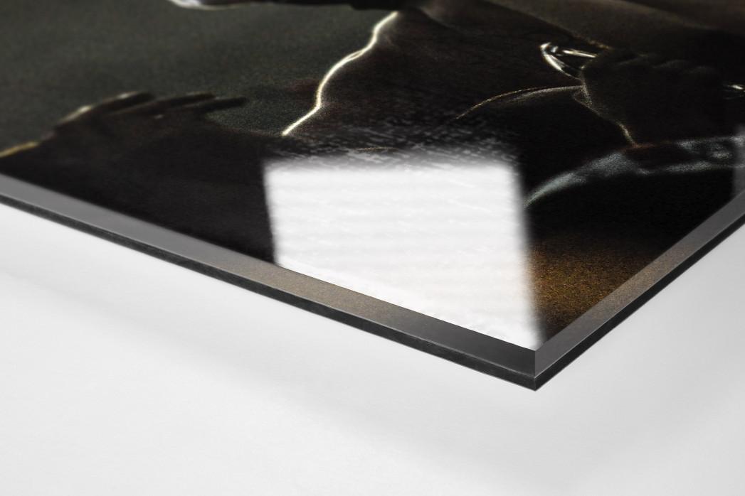 Ponte Preta Fan Celebrating als Direktdruck auf Alu-Dibond hinter Acrylglas (Detail)