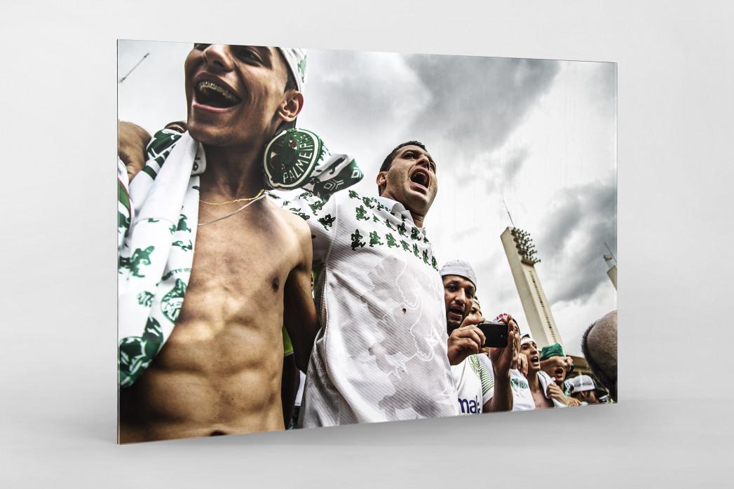 Palmeiras Fans In The Stand als Direktdruck auf Alu-Dibond hinter Acrylglas