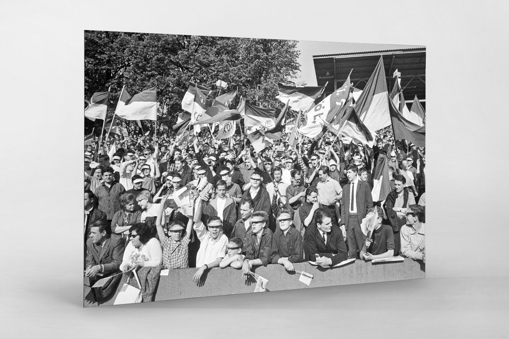 Köln Fans 1964 als auf Alu-Dibond kaschierter Fotoabzug