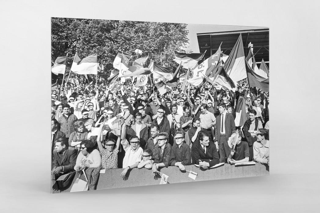 Köln Fans 1964 als Direktdruck auf Alu-Dibond hinter Acrylglas