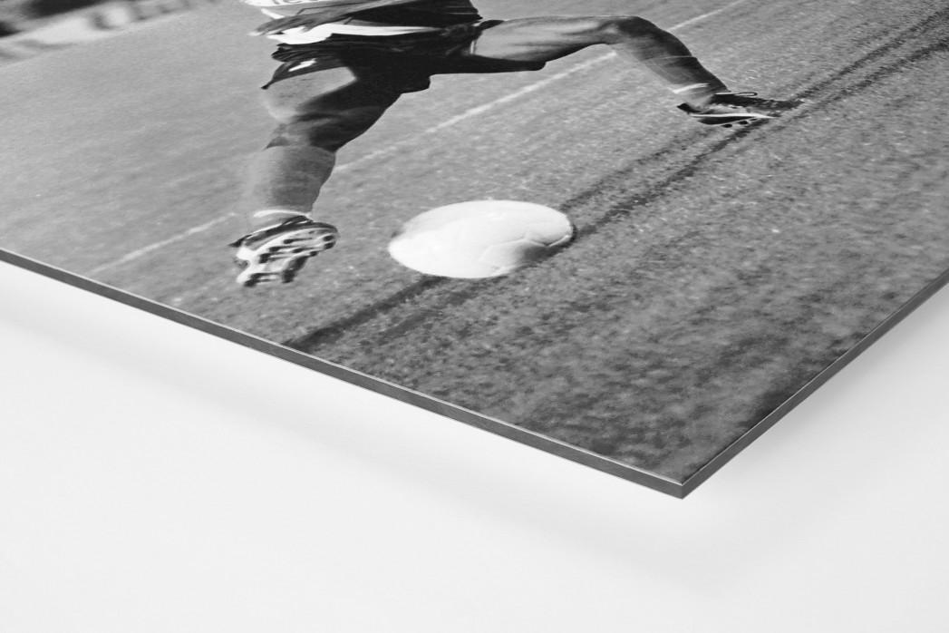 Jay-Jay vs. Titan als auf Alu-Dibond kaschierter Fotoabzug (Detail)
