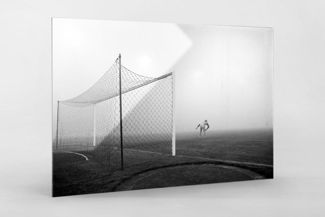 Pfaff im Nebel als Direktdruck auf Alu-Dibond hinter Acrylglas