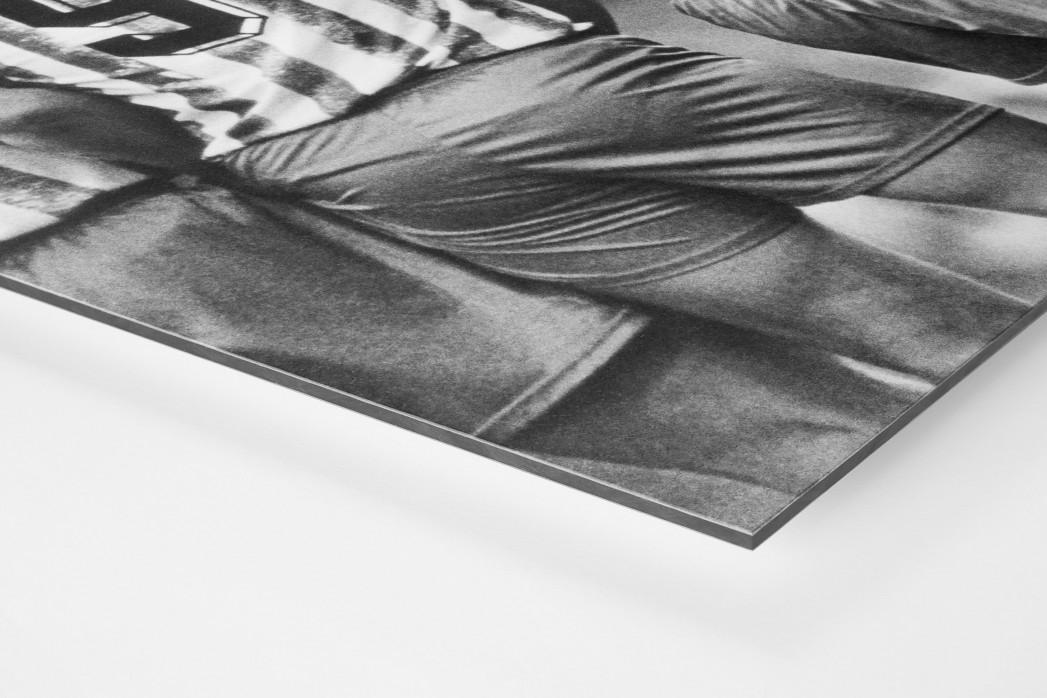 Rücken der Löwen als auf Alu-Dibond kaschierter Fotoabzug (Detail)